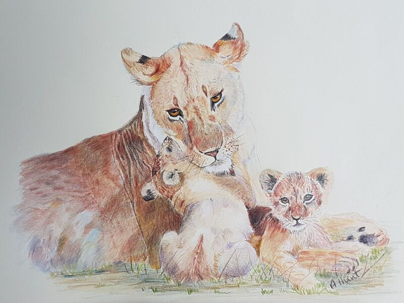 Lioness and her 2 cubs